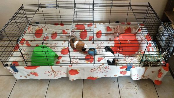 Guinea Pig Fleece liners & bedding